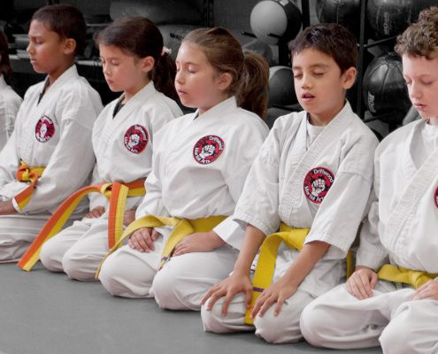 Youth Karate Class